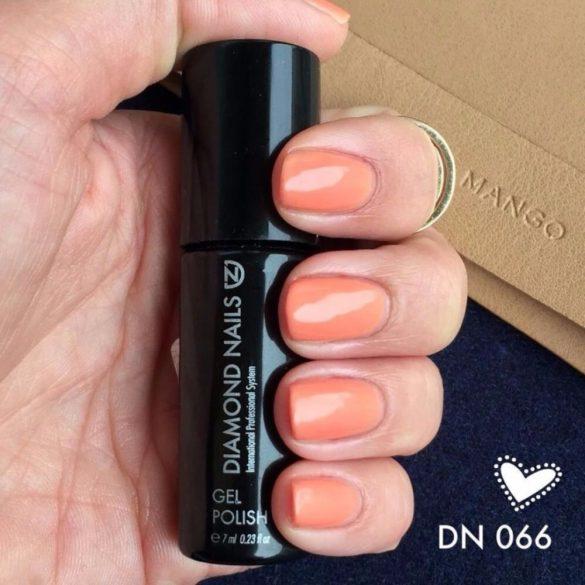 Gel Nail Polish - DN066