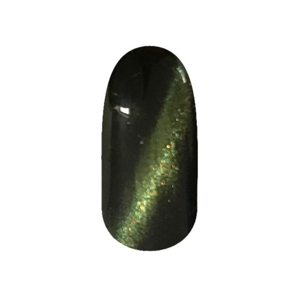 Magnetic Gel Polish - SKY06