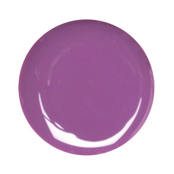 Violet Color Gel 5gr #25
