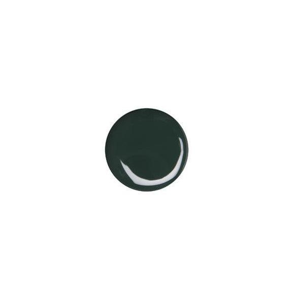 Dark Green Color Gel 5g #040