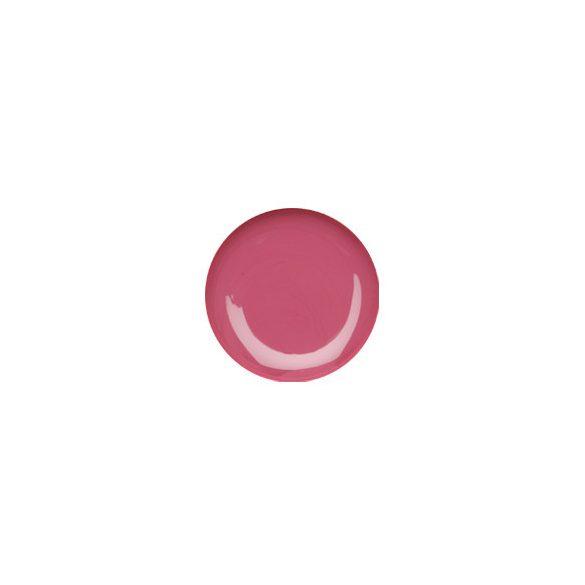 Lovely Pink Color Gel 5g #046